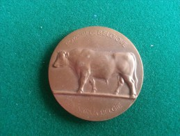 Ministerie Van Landbouw 1956 (Raymond De Meester), 39 Gram (medailles0994) - Belgique