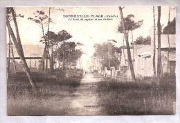 CPA - Denneville Plage (50) - Le Bois De Sapins Et Ses Châlets - France