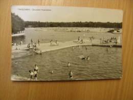 Romania  - TImisoara Strandul Tineretului  D117324 - Postcards