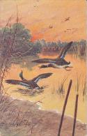 Jagd Chasse Hunting  Hunter Jäger  Canard  Enten  Signe T. Rosle  Oiseau Illustrteur  Old Cpa. - Hunting