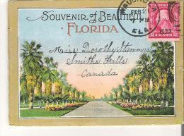 "Souvenir Folder Of Beautiful Florida  4.3"" X 3.2""  11 Cm X 8 Cm - Other"