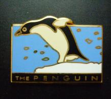 The Penguin - Pingouin / Manchot - Animals