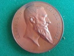 Exposition Universelle D'Anvers 1894 (Baetes), 82 Gram (medailles0035) - Sonstige