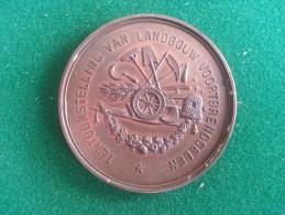 Maatschappij Flora Borgerhout, Tent. Landbouw Voortbrengselen, 32 Gram (medailles0041) - Belgique