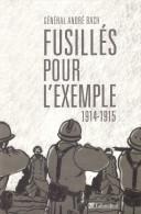 FUSILLES POUR EXEMPLE 1914 1915 MUTINERIE DESOBEISSANCE ARMEE FRANCAISE POILU  TRIBUNAL MILITAIRE CONSEIL GUERRE