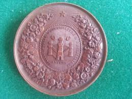 Societe Royale D'Horticulture & D'Agricultre D'Anvers, 43 Gram (medailles0045) - Belgique