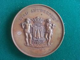Antwerpen's Rubenskring, Handel En Nijverheidstentoonstelling 1887 (F. Baetes), 119 Gram (medailles0051) - Sonstige