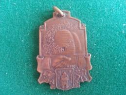 Algemeen Verbond Der Vlaamsche Mutualistische Vereenigingen Van België, Aan F. De Backer, 11 Gram (medailles0060) - Sonstige
