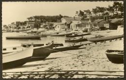 LE CANON Rare Les Bords Du Bassin (Combier) Gironde (33) - Francia