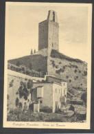 7341-CASTIGLION FIORENTINO(AREZZO)-TORRE DEL CASSERO-FG - Arezzo