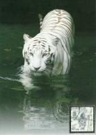 az789MC Azerbaijan 2010 Year of the Tiger MC Michel 789