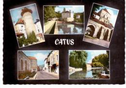 Catus - Multivues - Non Classés