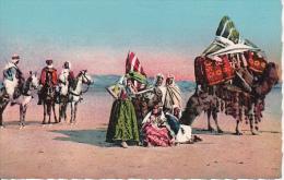 CPA Caravane Indigène Dans Le Sud - Scenes Et Types D'Afrique Du Nord (4218) - Algerien