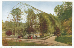 The Flying Cage, New York Zoological Park - Bronx