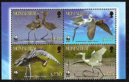 (WWF-461) W.W.F. Montserrat Reddish Egret MNH Stamps With Board 2010 - W.W.F.