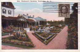 333 - Rochester,Eastman's Gardens,TCV,non-circule - Rochester