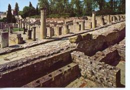 Vaison La Romaine : Pompei Française Quartier De La Villasse Côté Rue Des Boutiques Les Latrines N°95/511 Sl - Vaison La Romaine