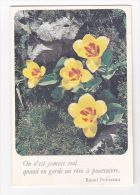 CALENDRIER DE POCHE 1984 - Calendars