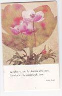 CALENDRIER DE POCHE 1981 - Calendarios