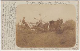22001g AGRICULTURE - TRAVAUX Des CHAMPS - MOISSONEUSE - BATTEUSE - 1903 - Carte Photo - Namur