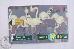 Spanish Collectible  Phone Card Telefonica: Fauna Iberica - Flamenco (Phoenicopterus Ruber) American Flamingo - Pájaros