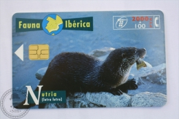 Spanish Collectible  Phone Card Telefonica: Nutria ( Lutra Lutra)/  European Otter - Télécartes