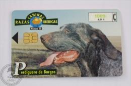 Spanish Collectible  Phone Card Telefonica: Razas Caninas Ibericas: Perdiguero De Burgos/ Burgos Pointer - Perros