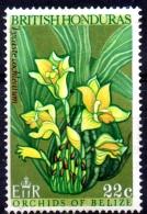 "BRITISH HONDURAS 1969 Orchids Of Belize - 22c. - ""Lycaste Cochleatum"" MNG PAPER ATTACHED - British Honduras (...-1970)"