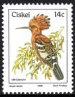 Ciskei - 1981 Birds 14c Hoopoe MNH** - Ciskei