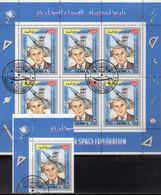 Bautenserie 2006 Neu 120€ MICHEL Variante Abarten Zähnung Wasserzeichen Special-catalogue Richnow Stamp Of Germany 1948 - Documentos Antiguos