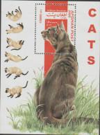 O) 2000 AFGHANISTAN, CATS, SOUVENIR MNH - Afghanistan