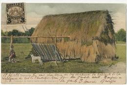 Ruca Mapuche Indois Edcion Carlos Brandt 524 Color 1903 Indiens Vers Briou Levroux - Chile