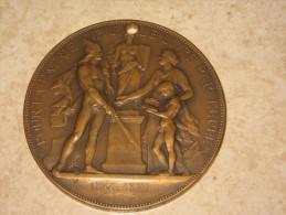 Médaille En Bronze Pour La Patrie Par Le Livre Par L'Epée 1866-1881 A. BORREL 1884 - France