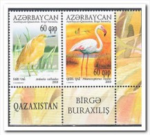 Azerbeidzjan 2010 Postfris MNH, Birds - Azerbeidzjan