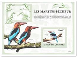 Comoren 2009 Postfris MNH, Birds - Comoren (1975-...)