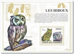 Comoren 2009 Postfris MNH, Birds, Owls - Comoren (1975-...)