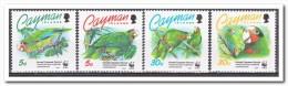Kaaiman Eilanden 1993 MNH, WWF Birds - Kaaiman Eilanden