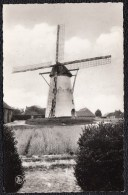 GIERLE MOLEN - Nels - Belgique