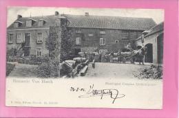 BERINGEN: BROUWERIJ - BRASSERIE-STOKERIJ- PAARDESPAN - VAN HERCK- PRACHT KAART , - Beringen