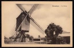 Herenthout - De Molen - édit. Verelst - Moulin - Herenthout
