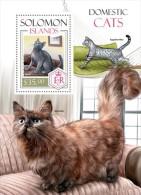 SOLOMON ISLAND 2014 ** S/S Domestic Cats Hauskatzen Katzen Chats Domestiques A1420 - Gatti