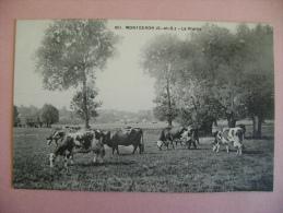 CP MONTGERON  N°601  LA PRAIRIE - Montgeron