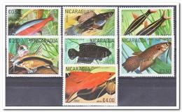 Nicaragua 1981 Postfris MNH, Fish - Nicaragua