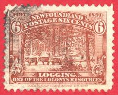 Newfoundland # 66 - 6 Cents -  O- Dated 1897 - Logging /  Bûcheron - 1865-1902