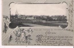 GRUSS AUS SEEHAUSEN KR. WANZLEBEN  860   GESAMMTANSICHT 1901 - Deutschland