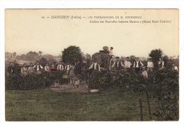 CPA (36) ISSOUDUN (Indre) : Les Vendangeurs De M. Coudereau - Issoudun