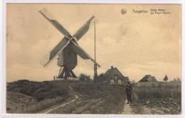 Tongerloo - Oude Molen - Westerlo