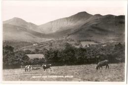 BRECON  - Unused Photo Card - Breconshire