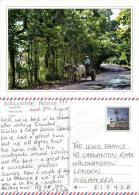 Campesino, Pinar Del Rio, Cuba Postcard Used Posted To UK 2000s Porte Pagado - Cuba