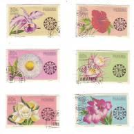 Fleurs Sur Timbres De Panama (neufs Avec Charnières) - Panama